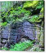Rock Wall Trail Of The Cedars Glacier National Park Painted Acrylic Print