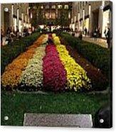 Rockefeller Center In Autumn Acrylic Print