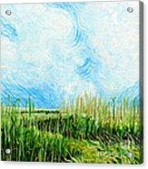 Rockefeller Coastal Marsh Louisiana  Acrylic Print