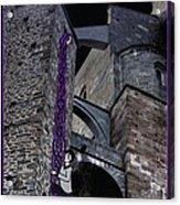 Rockin' Raven Celtic Rapunzel Acrylic Print