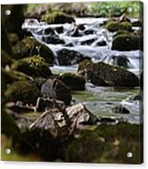 Rocks And The River Acrylic Print by Dave Woodbridge
