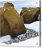 Rocks At Brown Bluff, Antarctica Acrylic Print