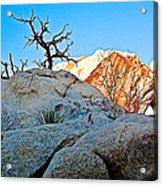 Rocks In Sun And Shade Along Barker Dam Trail In Joshua Tree Np-ca- Acrylic Print