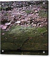 Rocks - Parfreys Glen - Wisconsin Acrylic Print