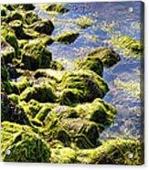 Rocky Green Acrylic Print by Kenneth Feliciano