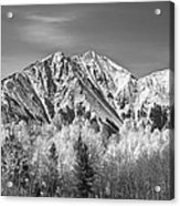 Rocky Mountain Autumn High In Black And White Acrylic Print
