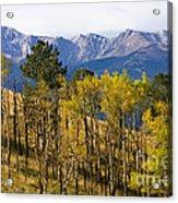 Rocky Mountain Autumn Acrylic Print