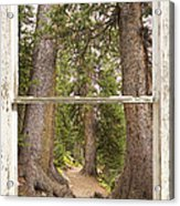 Rocky Mountain Forest Window View Acrylic Print