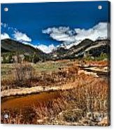 Rocky Mountain Meadows Acrylic Print