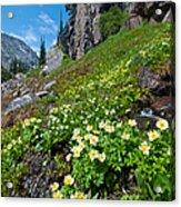 Rocky Mountain Summer Landscape Acrylic Print