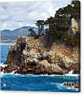 Rocky Outcropping At Point Lobos Acrylic Print