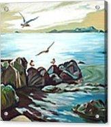 Rocky Seashore And Seagulls Acrylic Print