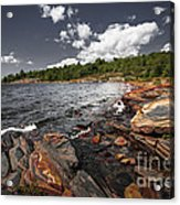 Rocky Shore Of Georgian Bay I Acrylic Print by Elena Elisseeva