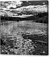 Rocky Shore Of The Moose River Acrylic Print