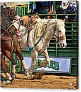 Rodeo Action Acrylic Print