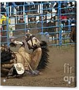 Rodeo Crunch Time Acrylic Print