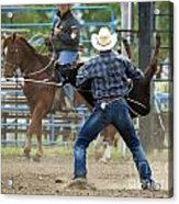 Rodeo Easy Does It Acrylic Print
