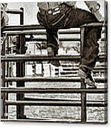 Rodeo Fence Sitters- Sepia Acrylic Print