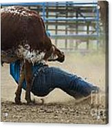 Rodeo Getting Down Acrylic Print