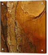 rodks 'II Acrylic Print