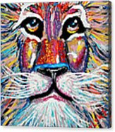 Rodney Abstract Lion Acrylic Print