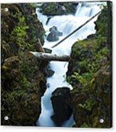Rogue River Falls 1 Acrylic Print