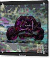 Roller_play Acrylic Print