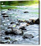 Rolling Brook Acrylic Print