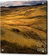 Rolling Hills Acrylic Print by Robert Bales