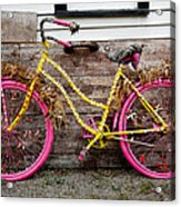Rolling On Pink Acrylic Print
