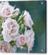 Romance Acrylic Print