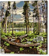 Romantic Meadow Acrylic Print