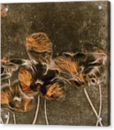 Romantiquite -  04c Acrylic Print
