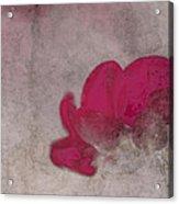 Rondo Floral - 22t02 Acrylic Print