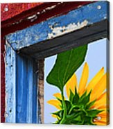Room With A View Acrylic Print