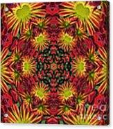Roomum Acrylic Print