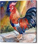 Rooster At Sunrise Acrylic Print