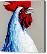 Rooster Head Acrylic Print