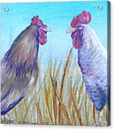 Roosters Acrylic Print