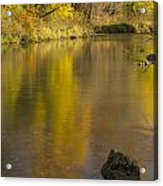 Root River Autumn 2 Acrylic Print