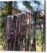 Rope Halters For Horses Lined Acrylic Print