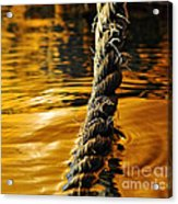 Rope On Liquid Gold Acrylic Print