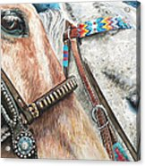 Roping Horses Acrylic Print by Nadi Spencer