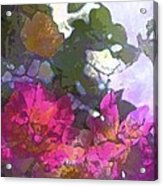 Rose 206 Acrylic Print by Pamela Cooper