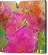 Rose 256 Acrylic Print