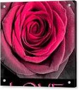 Rose 33 Love Acrylic Print
