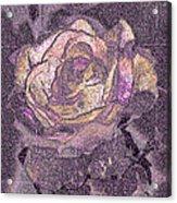 Rose Art # 1 Acrylic Print