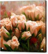 Rose Blush Acrylic Print