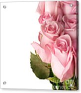 Rose Bouquet Acrylic Print by Boon Mee