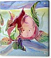 Rose Bud Acrylic Print by Mindy Newman